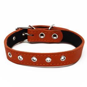 Ошейник кожаный на синтепоне, безразмерный, 54 х 2.5 см, оранжевый