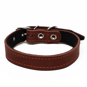 Ошейник кожаный на синтепоне, 56 х 2.5 см, ОШ 35-45 см, коричневый