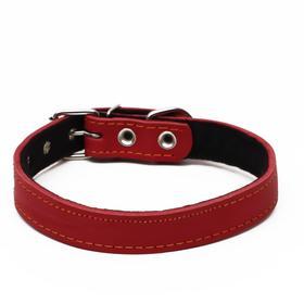 Ошейник кожаный на синтепоне, 56 х 2.5 см, ОШ 35-45 см, красный