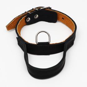 Ошейник кожаный тройной, с ручкой, 57 х 2.5 см, ОШ 35-45 см, чёрныё