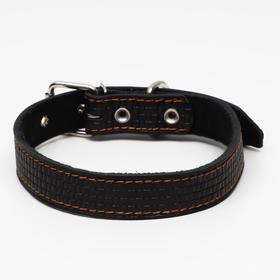 Ошейник кожаный с тиснением на синтепоне, 65 х 3 см, ОШ 40-55 см, чёрный
