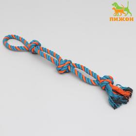 Игрушка-дразнилка канатная для собак, двойная, 50 см, 140 г, микс цветов