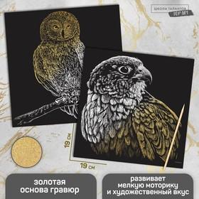 Набор гравюр «Птицы», с металлическим эффектом «золото», 2 шт, 19х19 см