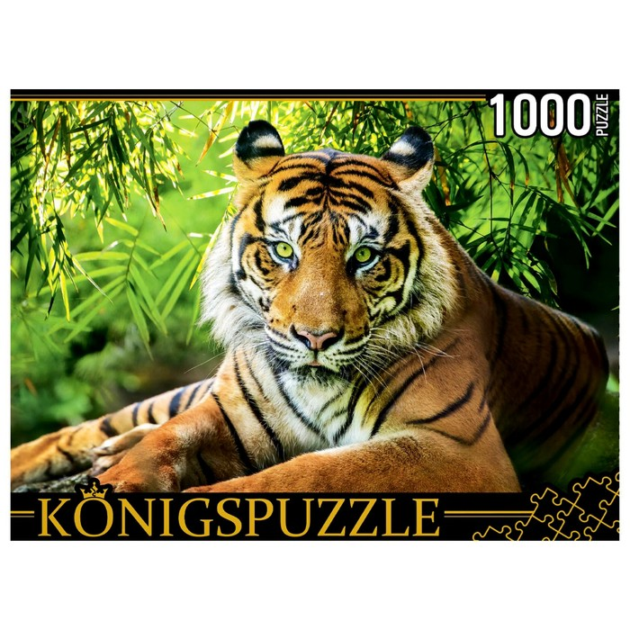Пазлы 1000 элементов «Благородный тигр» - фото 3702394