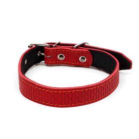 Ошейник кожаный с тиснением на синтепоне, 65 х 3 см, ОШ 40-55 см, красный