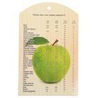 """Доска разделочная 18,5x29,5 см """"Зеленое яблоко"""""""