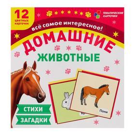 """Набор демонстрационных карточек """"Домашние животные"""" 12 шт, 94 х 100 мм"""