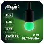 Лампа светодиодная декорат., G45, Е27, 1,5 Вт, для белт-лайта, зеленый