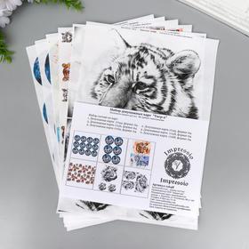 """Набор декупажных карт 6 шт  """"Тигры-2"""" плотность 45г/м2"""