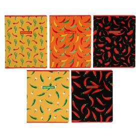 Тетрадь 48 листов в клетку Pepper, обложка мелованный картон, выборочный УФ-лак, блок офсет, МИКС