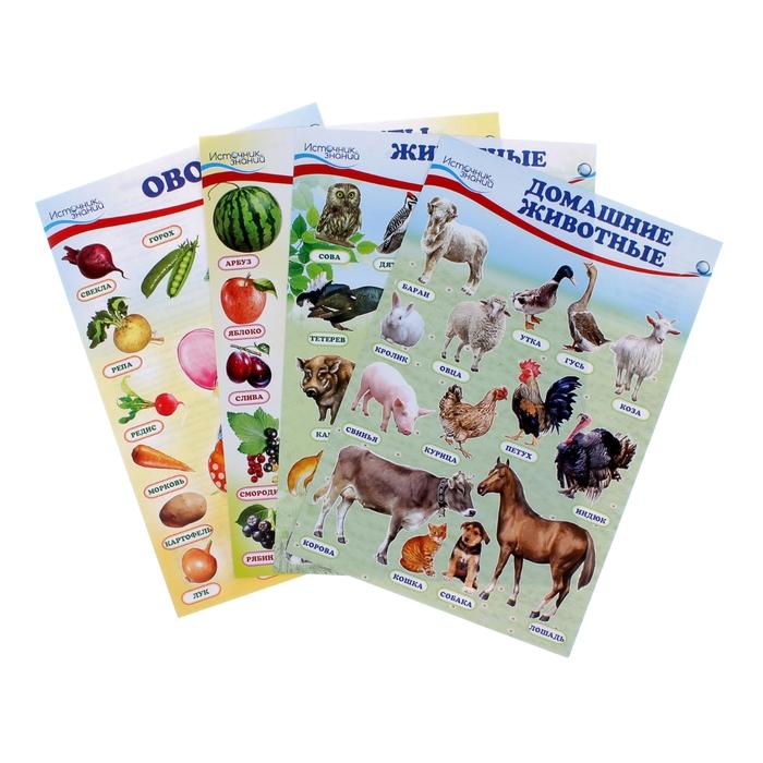 """Набор плакатов """"Домашние, лесные животные,фрукты и ягоды, овощи"""" с заданием, А4"""