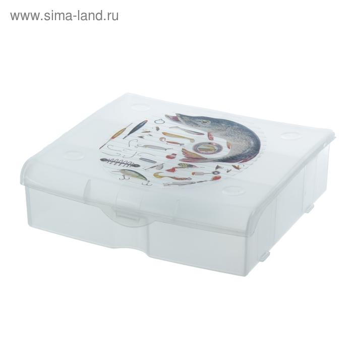 Ящик для рыболовных принадлежностей, 5 ячеек
