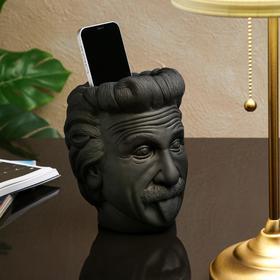 """Органайзер-кашпо """"Эйнштейн"""", черный, 21 см"""