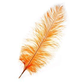 Перо для декора, длина от 45 до 50 см, цвет персиковый