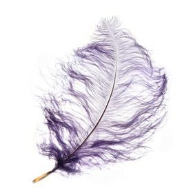 Перо для декора, длина от 45 до 60 см, цвет серый