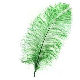 Перо для декора, длина от 45 до 60 см, цвет зелёный