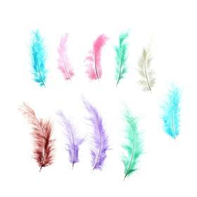 Набор перьев для декора, набор 10 шт., размер 1 шт: 10×2 см, цвета пудровые МИКС