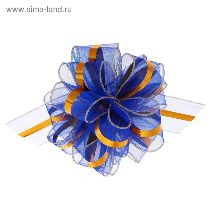 "Бант-бабочка №6 ""Эксклюзив"", цвет голубой"