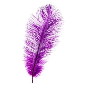Перо для декора, размер: 25-30 см, цвет фиолетовый