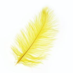 Перо для декора, размер: 25-30 см, цвет жёлтый