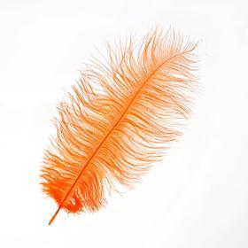 Перо для декора, размер: 25-30 см, цвет оранжевый