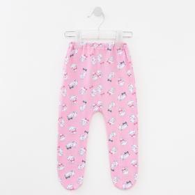 Ползунки детские, цвет розовый/кошки, рост 62 см