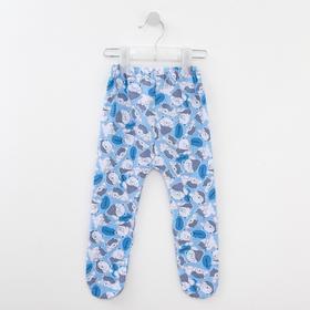 Ползунки детские, цвет голубой/мишки, рост 62 см