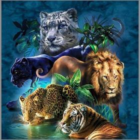 Алмазная мозаика «Дикие кошки» 45×45 см, 40 цветов