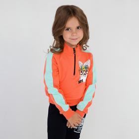 Толстовка для девочки, цвет коралл/мята, рост 110 см