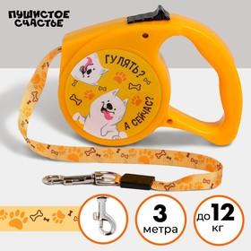 Рулетка «Гулять? А сейчас?» 3 м, max=12 кг, жёлтая