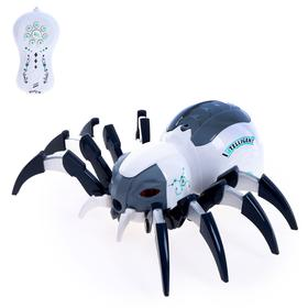 Паук радиоуправляемый «Механический», световые и звуковые эффекты, работает от аккумулятора