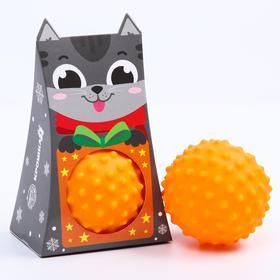 Развивающий массажный рельефный мячик «Котёнок», 1 шт.