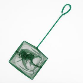 Сачок зелёный, 20 см