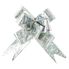 Bow-tie №1,2 holography, color silver