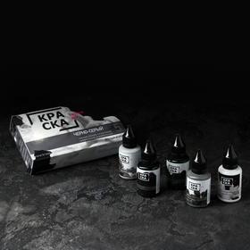Сет краски «Чёрно-серый», 5 шт. 30 мл