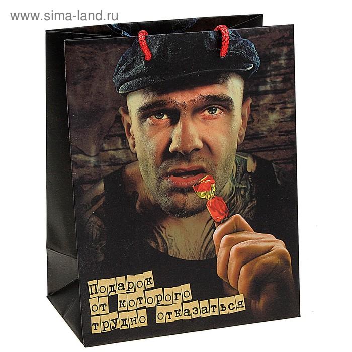 Пакет ламинат «Неожиданный подарок», MS 18 х 23 х 10 см