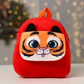 Рюкзак детский «Тигр», с карманом, 24 х 24 см