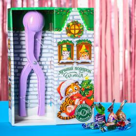 Подарочный набор «Лучший подарок для тебя»: конфеты, снежколеп 500 г.