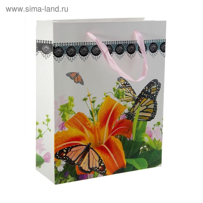 """Пакет ламинированный """"Бабочки на гладиолусе"""""""