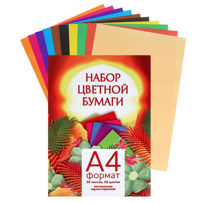 Бумага цветная А4 10л 10цв одност мелов 65г/м2, в папке 515001