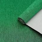 Бумага креп, с фольгированием, цвет зелёный, 0,5 х 2,5 м