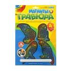магниты на цветном фоне Компания попугаев