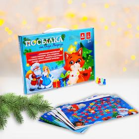 Развивающий набор с играми «Посылка от Деда Мороза»