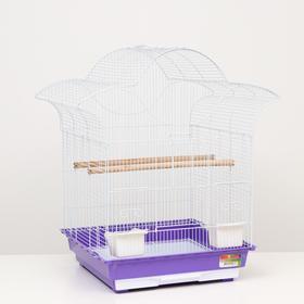 "Клетка для птиц ""Алиса"", укомплектованная, 47 х 47 х 69 см, микс цветов"