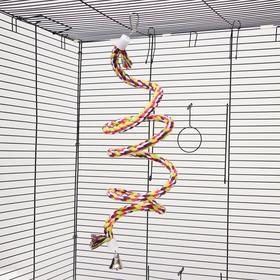 """Игрушка для птиц """"Верёвочная жердочка"""", 40 см, микс цветов"""