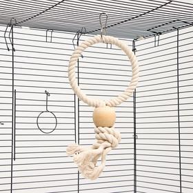 """Игрушка для птиц """"Обруч с шарами"""" 15*32 см, микс цветов"""