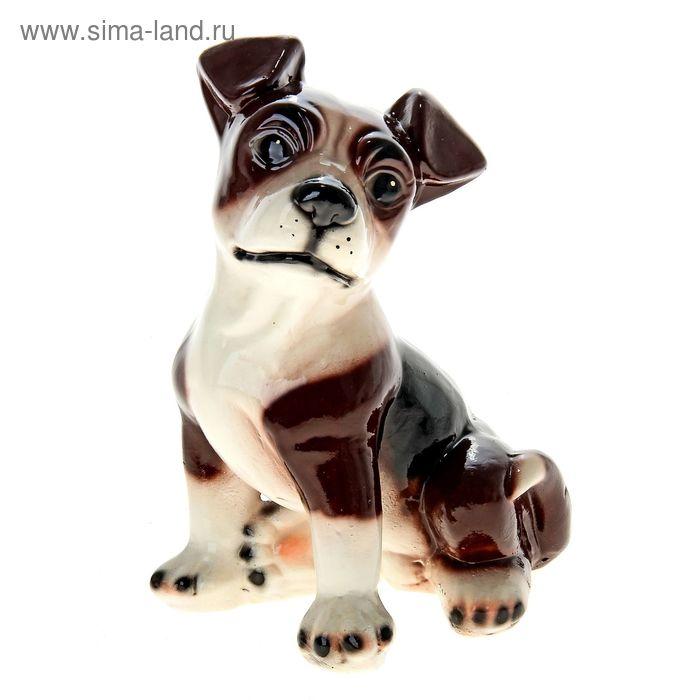 "Копилка ""Собака Джулия"" глянец, тёмно-коричневая"