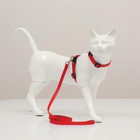 Комплект для кошек, ширина 1 см, ОШ 16,5-27 см, ОГ 21-35 см, поводок 120 см, красный