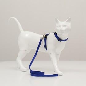 Комплект для кошек, ширина 1 см, ОШ 16,5-27 см, ОГ 21-35 см, поводок 120 см, голубой