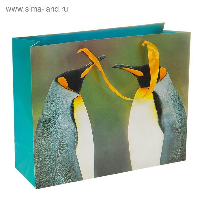 """Пакет ламинированный """"Пингвины"""""""